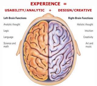 bagian-otak