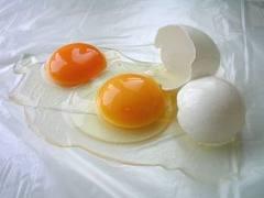 pengobatan-telur